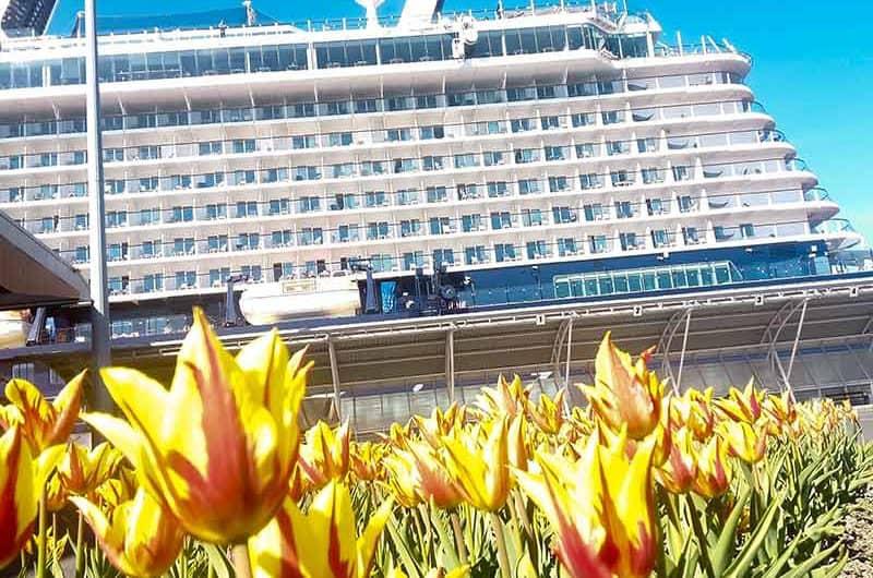 2018 Cruise Season